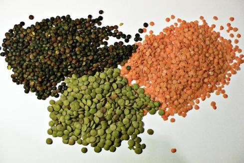 Lentils - red, green and puy