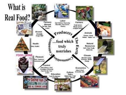 Real Food Wheel
