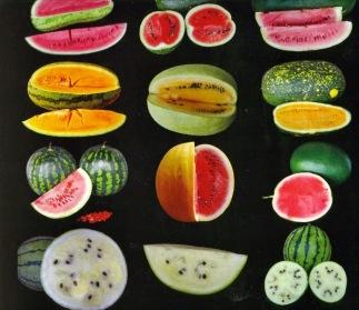 watermelon varieties