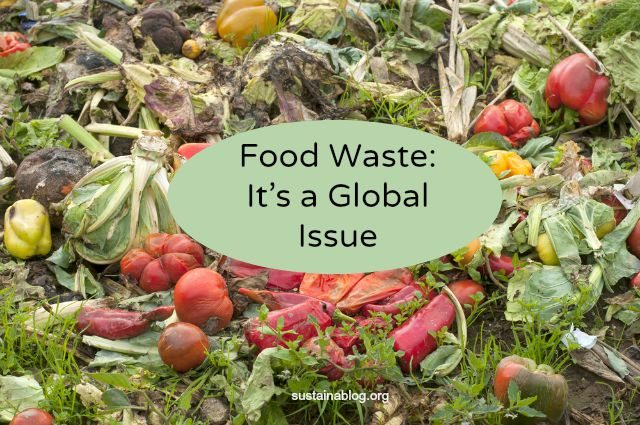the-issue-of-global-food-waste