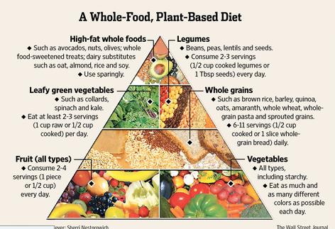 wfpb-food-pyramid (1)